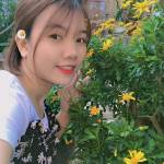 Lệ Lệ Profile Picture