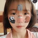Đao Phạm Profile Picture