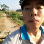 Tung Hoang Profile Picture