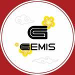 GEMIS Profile Picture